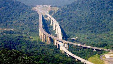 Photo of Különleges autópálya a dzsungel fölött – Videó