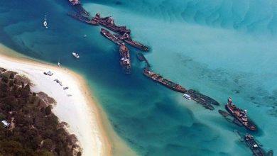 Photo of Tangalooma szándékosan elsüllyesztett hajóroncsai