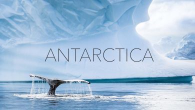 Photo of ANTARCTICA – Egy gyönyörű túra a világ leghidegebb kontinensére