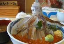 Photo of A világ egyik legbizarrabb étele – a táncoló tintahal tál