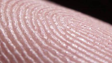 Photo of Így izzadnak az ujjbegyeink