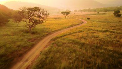 Photo of Lenyűgöző drónvideó Dél-Afrika varázslatos világáról