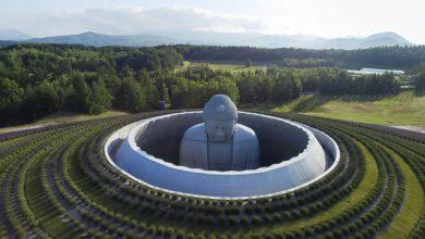 Photo of Gyönyörű levendulamező öleli körbe a hatalmas, földbe süllyesztett Buddha szobrot