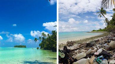Photo of Ausztrália érintetlennek hitt paradicsomi szigetcsoportja is a műanyagszennyezés áldozatává vált
