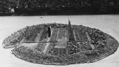 Photo of Veteményeskert a Westminster-székesegyházra ledobott bomba kráterében