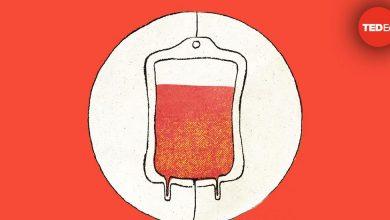 Photo of Hogyan működik a vérátömlesztés?