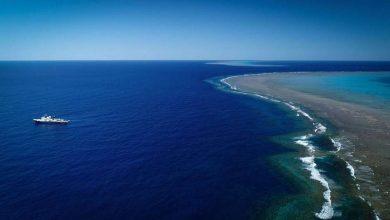 Photo of Ötszáz méter magas korallképződményt fedeztek fel az ausztráliai Nagy-korallzátonyon