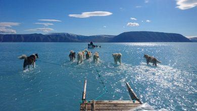 Photo of Több mint duplájára nőtt a Föld jegének olvadási sebessége 30 év alatt