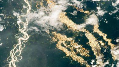"""Photo of Az Amazonas """"aranyfolyóiról"""" közölt képet a NASA"""