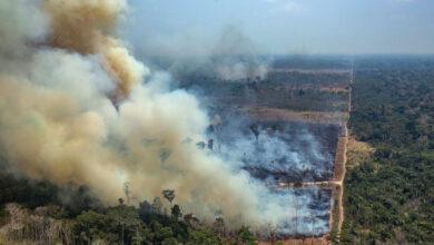 Photo of Már több szén-dioxidot bocsát ki az amazonasi esőerdő brazil szakaszán, mint amennyit elnyel