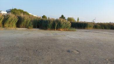 Photo of Száraz lábbal lehet sétálgatni a Velencei-tó medrében