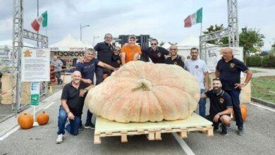 Photo of Sorra nyeri a díjakat a rekorder 1200 kilós óriástök
